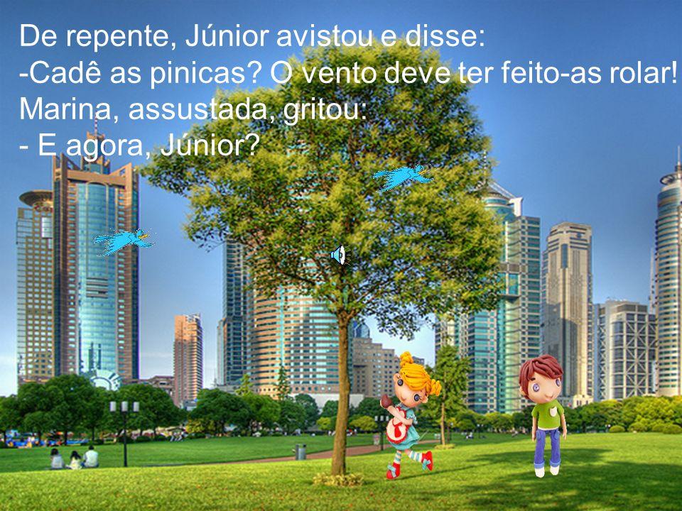 E Júnior respondeu: -Não tenha medo, Marina, joguei algumas pinicas enquanto vínhamos, assim,não erraremos o caminho de casa.