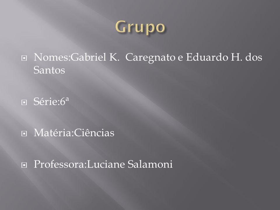 Nomes:Gabriel K. Caregnato e Eduardo H. dos Santos Série:6ª Matéria:Ciências Professora:Luciane Salamoni