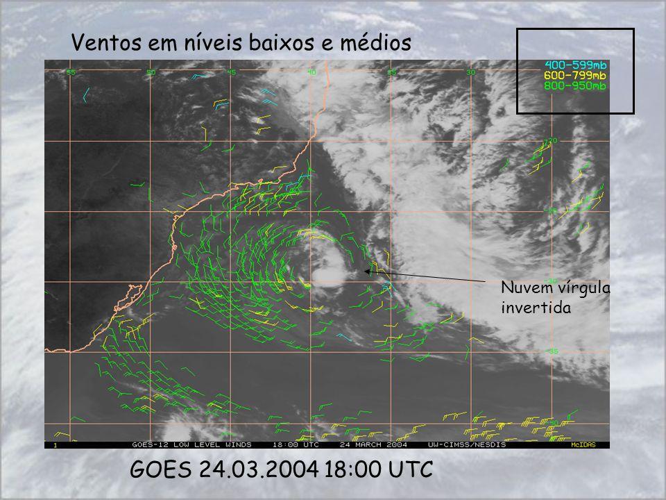 Ventos em níveis baixos e médios GOES 24.03.2004 18:00 UTC Nuvem vírgula invertida