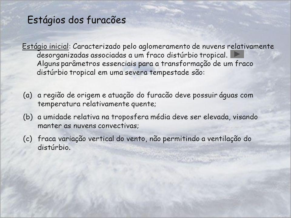 Estágios dos furacões Estágio inicial: Caracterizado pelo aglomeramento de nuvens relativamente desorganizadas associadas a um fraco distúrbio tropica