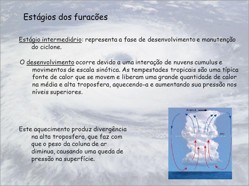 Estágios dos furacões Estágio intermediário: representa a fase de desenvolvimento e manutenção do ciclone. Este aquecimento produz divergência na alta