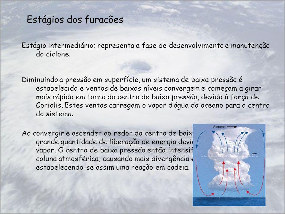Estágios dos furacões Estágio intermediário: representa a fase de desenvolvimento e manutenção do ciclone. Diminuindo a pressão em superfície, um sist
