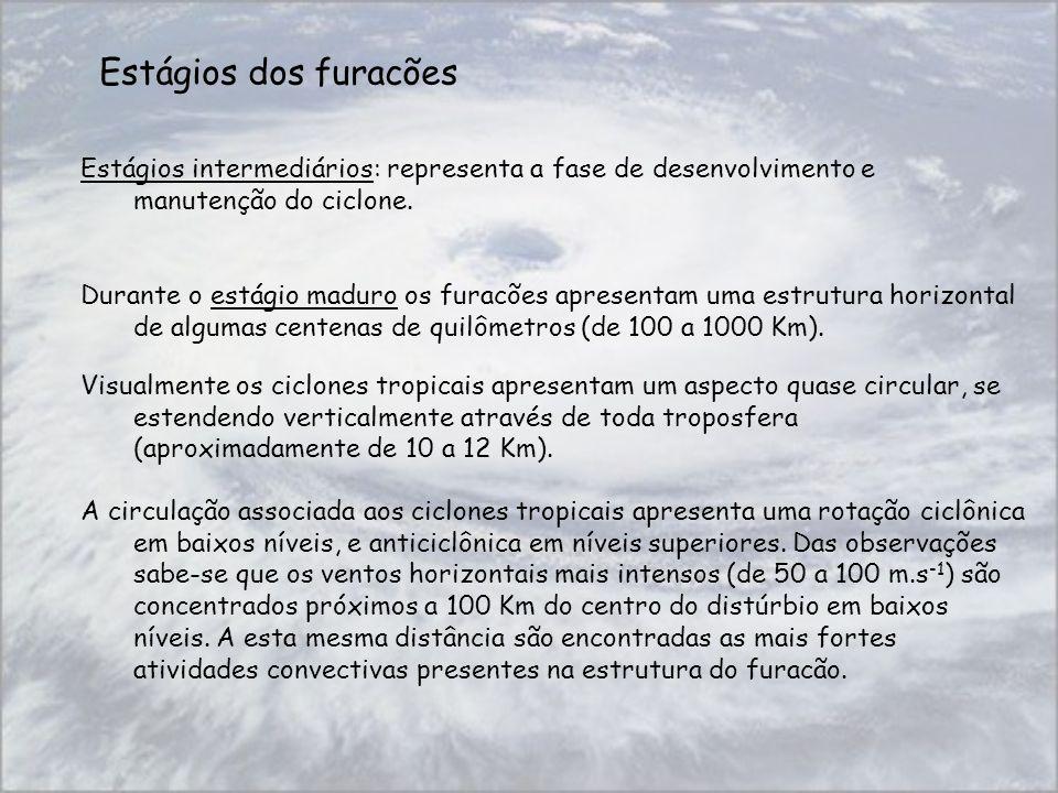 Estágios dos furacões Estágios intermediários: representa a fase de desenvolvimento e manutenção do ciclone. Durante o estágio maduro os furacões apre