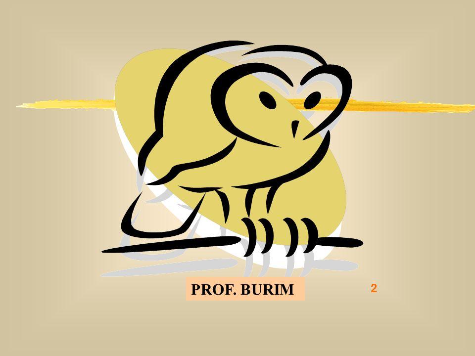 DEB 2008 – D.C.E. 2 PROF. BURIM