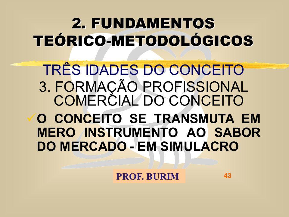 DEB 2008 – D.C.E. 43 2. FUNDAMENTOS TEÓRICO-METODOLÓGICOS TRÊS IDADES DO CONCEITO 3.