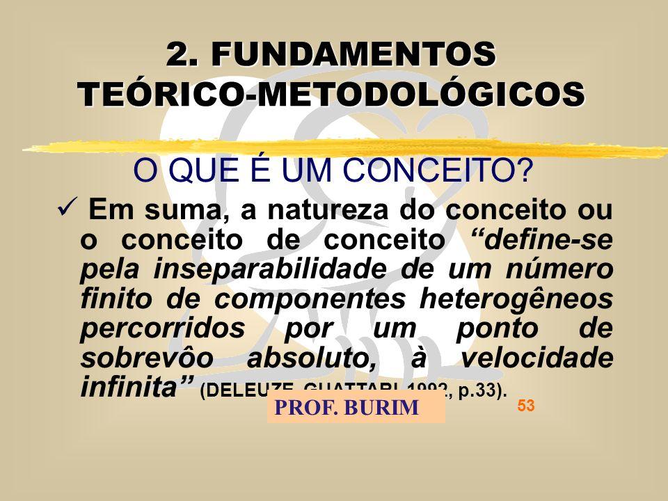 DEB 2008 – D.C.E. 53 2. FUNDAMENTOS TEÓRICO-METODOLÓGICOS O QUE É UM CONCEITO.