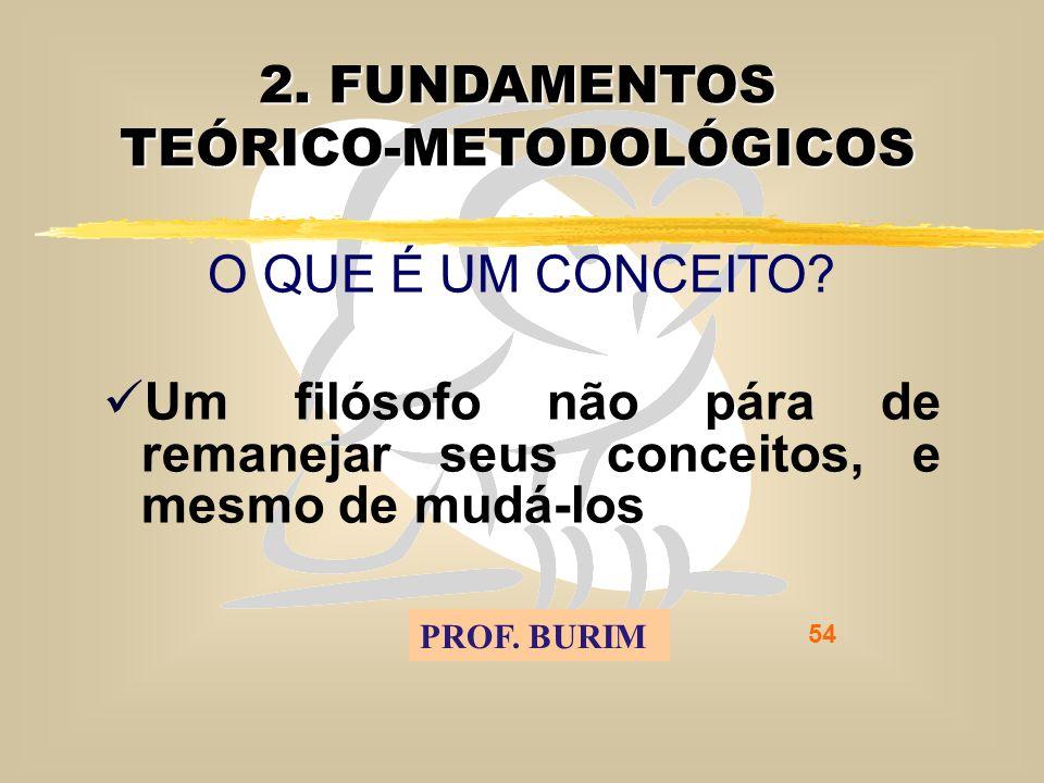 DEB 2008 – D.C.E. 54 2. FUNDAMENTOS TEÓRICO-METODOLÓGICOS O QUE É UM CONCEITO.
