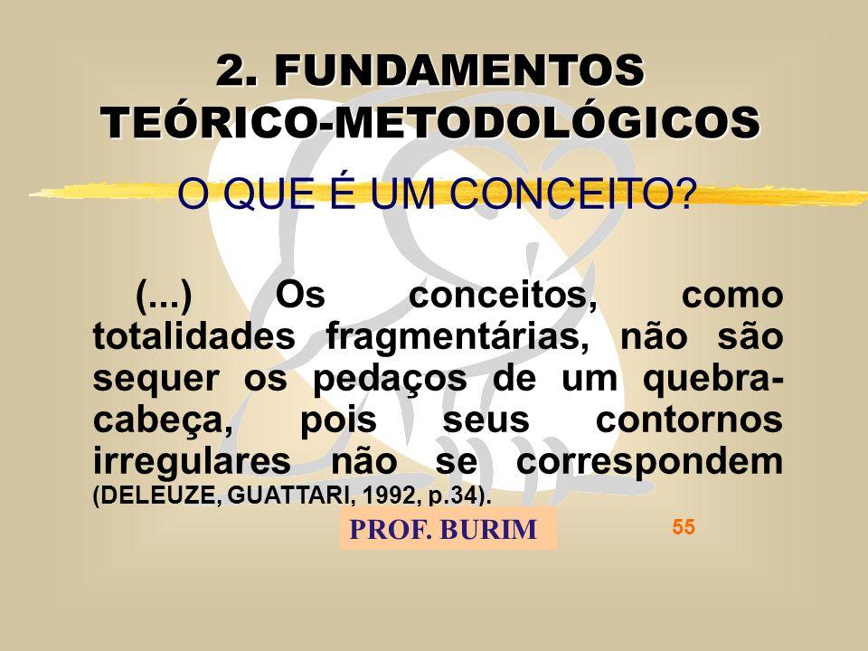 DEB 2008 – D.C.E. 55 2. FUNDAMENTOS TEÓRICO-METODOLÓGICOS O QUE É UM CONCEITO.