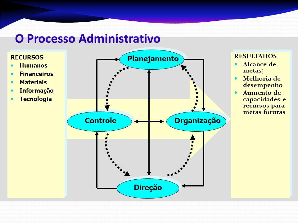 Estabelecimento de objetivos, políticas e estratégias organizacionais.
