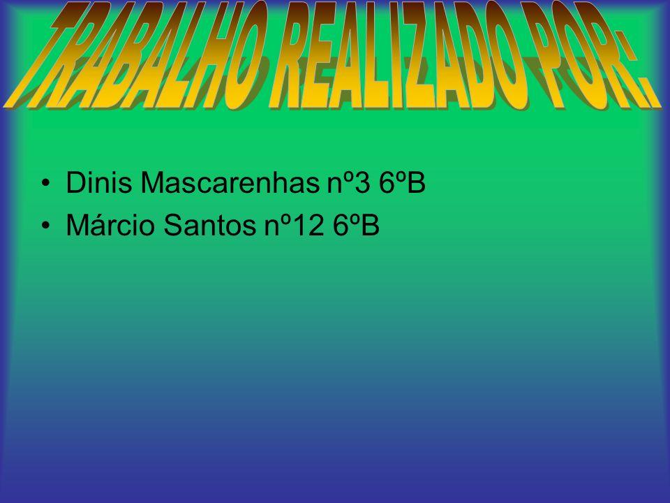 Dinis Mascarenhas nº3 6ºB Márcio Santos nº12 6ºB