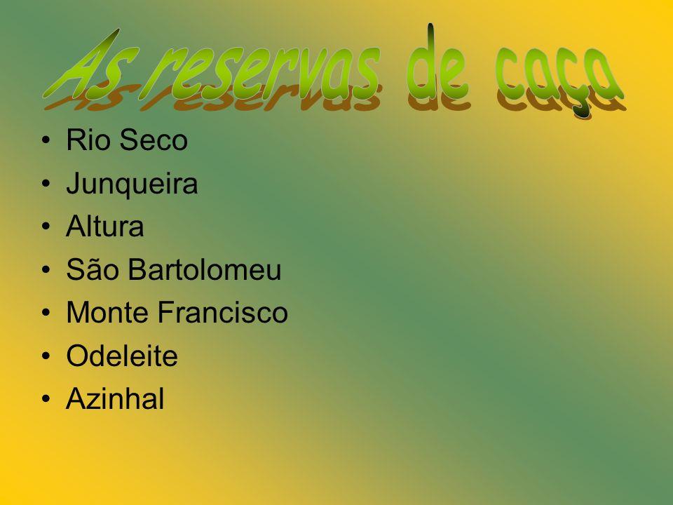 Rio Seco Junqueira Altura São Bartolomeu Monte Francisco Odeleite Azinhal