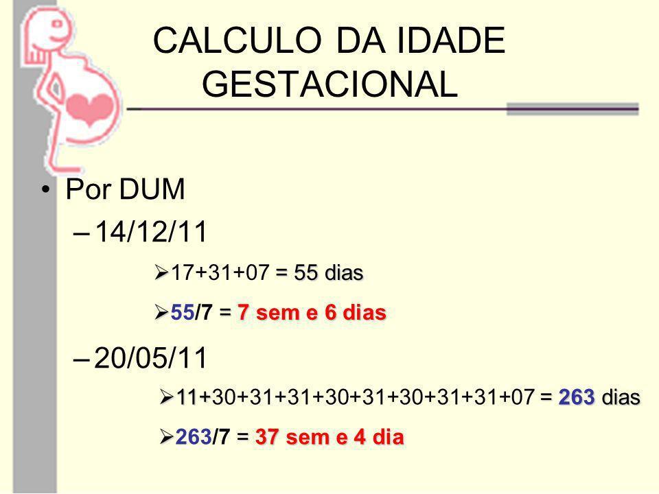 CALCULO DA IDADE GESTACIONAL Por DUM –14/12/11 –20/05/11 = 55 dias 17+31+07 = 55 dias = 7 sem e 6 dias 55/7 = 7 sem e 6 dias 11+ = 263 dias 11+30+31+3
