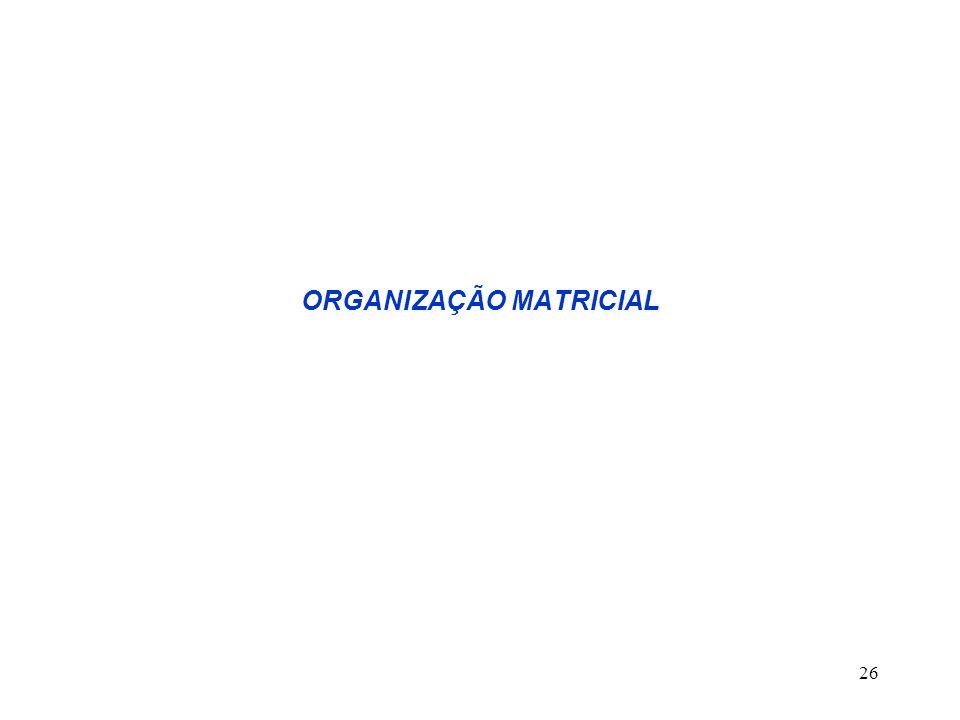 26 ORGANIZAÇÃO MATRICIAL