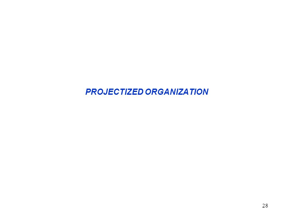 28 PROJECTIZED ORGANIZATION