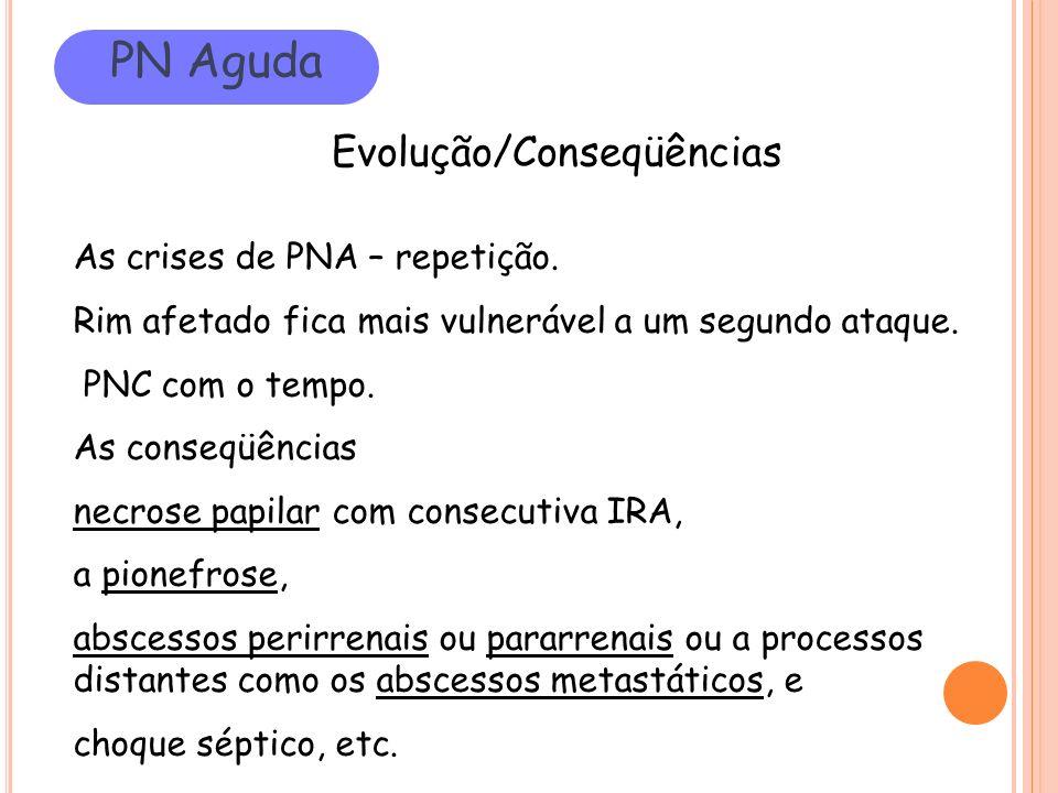 PN Aguda Evolução/Conseqüências As crises de PNA – repetição. Rim afetado fica mais vulnerável a um segundo ataque. PNC com o tempo. As conseqüências