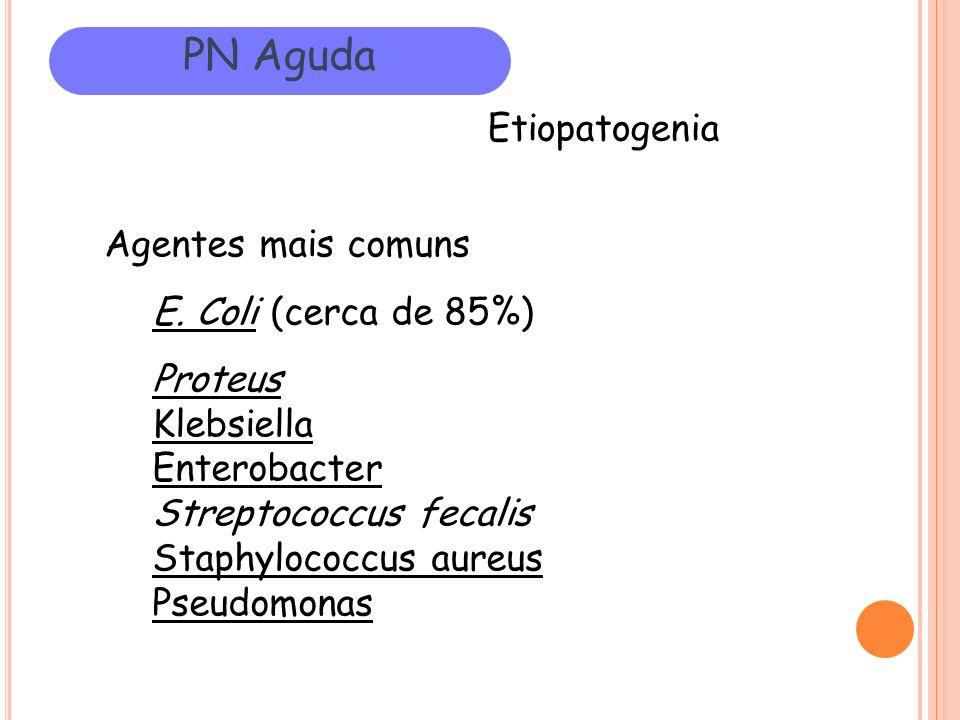 PN Aguda Etiopatogenia Agentes mais comuns E. Coli (cerca de 85%) Proteus Klebsiella Enterobacter Streptococcus fecalis Staphylococcus aureus Pseudomo