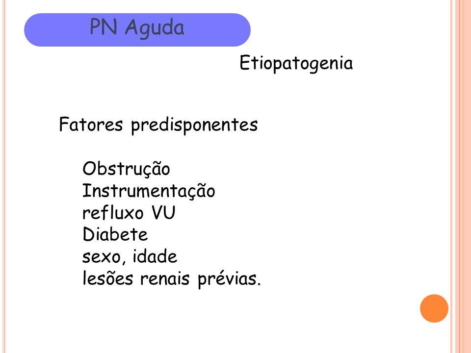 PN Aguda Etiopatogenia Fatores predisponentes Obstrução Instrumentação refluxo VU Diabete sexo, idade lesões renais prévias.