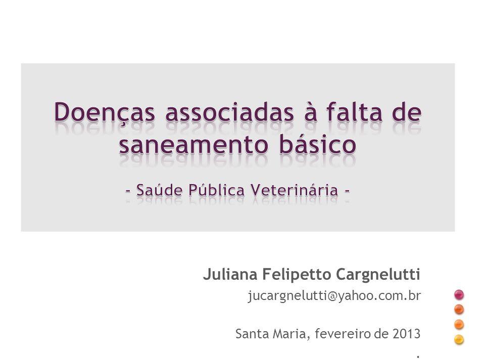 Juliana Felipetto Cargnelutti jucargnelutti@yahoo.com.br Santa Maria, fevereiro de 2013.