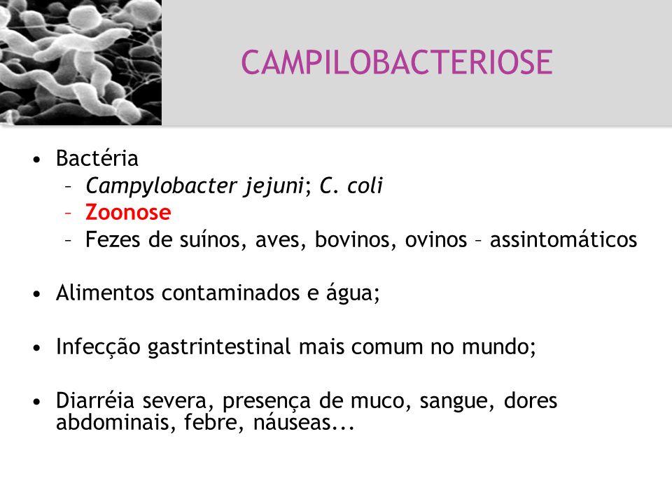 Bactéria –Campylobacter jejuni; C. coli –Zoonose –Fezes de suínos, aves, bovinos, ovinos – assintomáticos Alimentos contaminados e água; Infecção gast