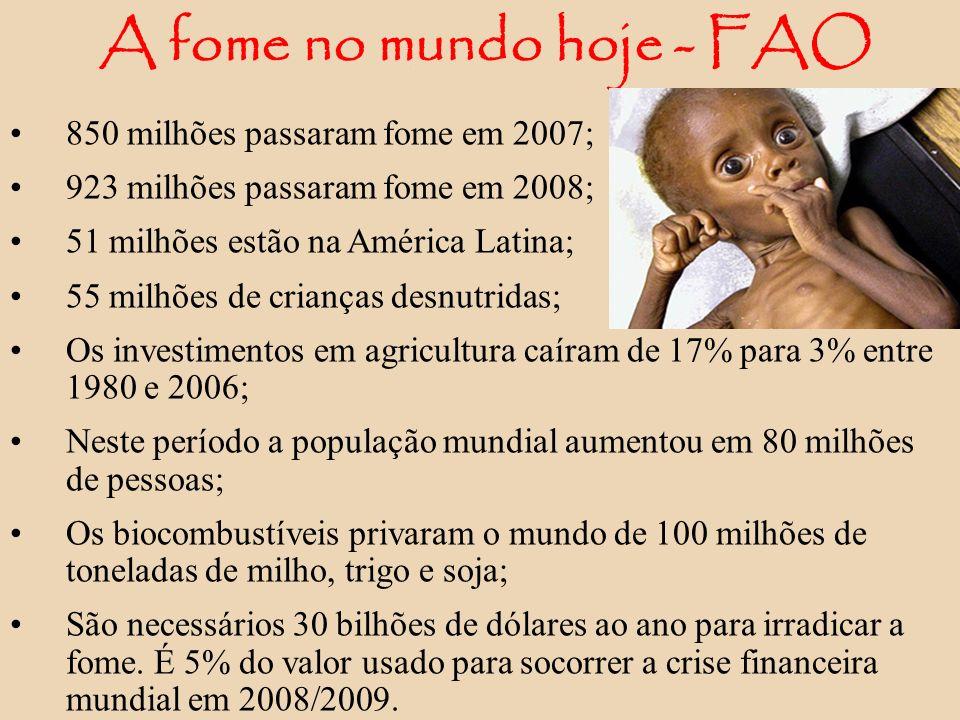 A fome no mundo hoje - FAO 850 milhões passaram fome em 2007; 923 milhões passaram fome em 2008; 51 milhões estão na América Latina; 55 milhões de cri