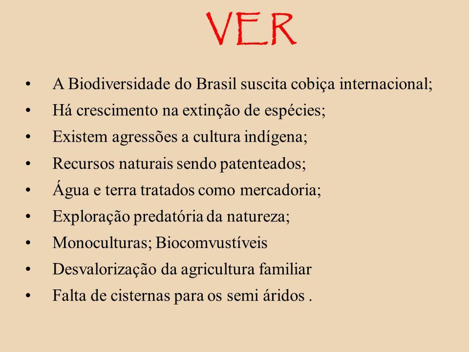 VER A Biodiversidade do Brasil suscita cobiça internacional; Há crescimento na extinção de espécies; Existem agressões a cultura indígena; Recursos na