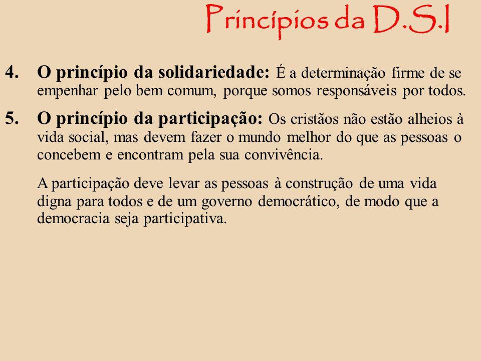 Princípios da D.S.I 4. O princípio da solidariedade: É a determinação firme de se empenhar pelo bem comum, porque somos responsáveis por todos. 5. O p