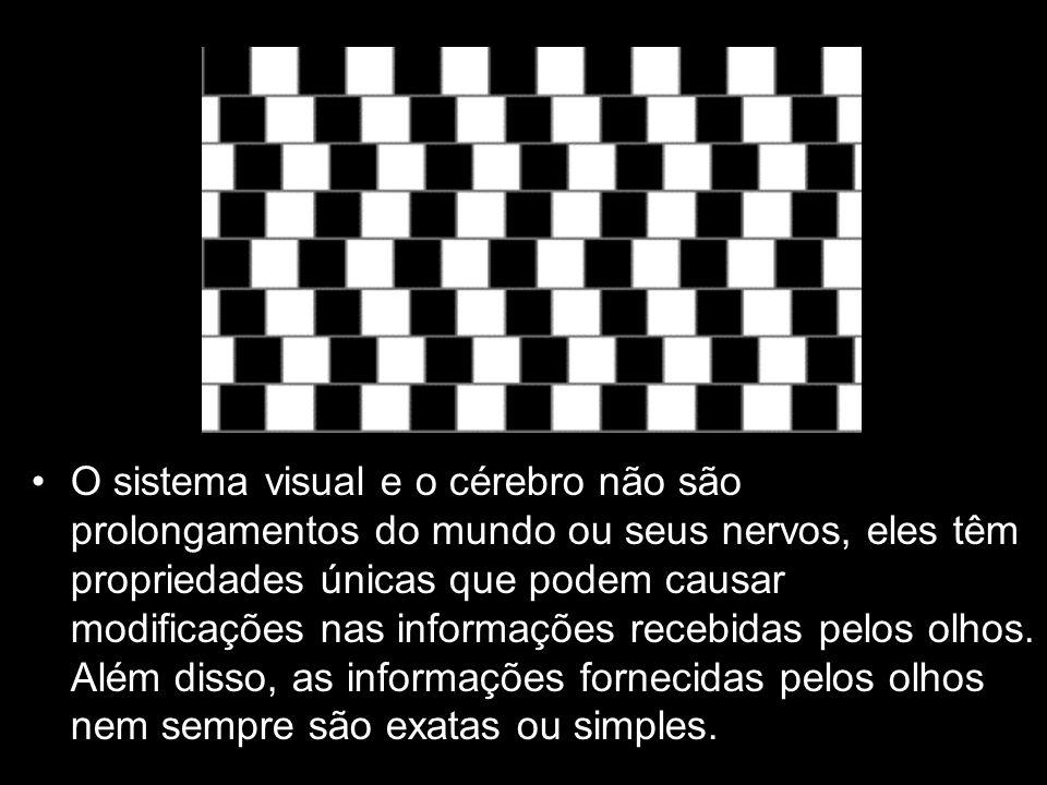 O sistema visual e o cérebro não são prolongamentos do mundo ou seus nervos, eles têm propriedades únicas que podem causar modificações nas informaçõe