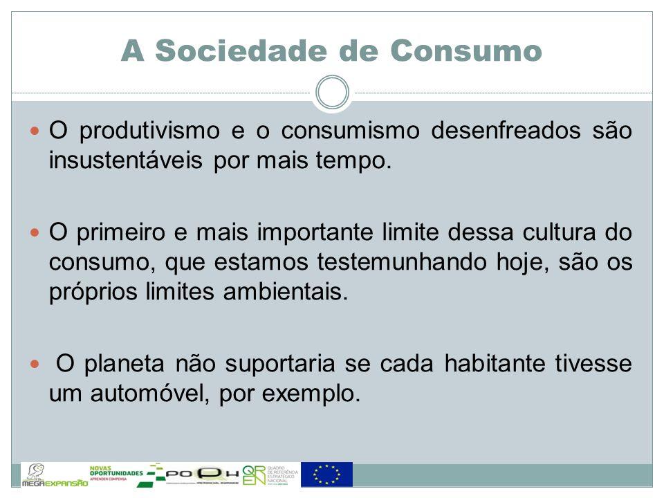 O produtivismo e o consumismo desenfreados são insustentáveis por mais tempo. O primeiro e mais importante limite dessa cultura do consumo, que estamo