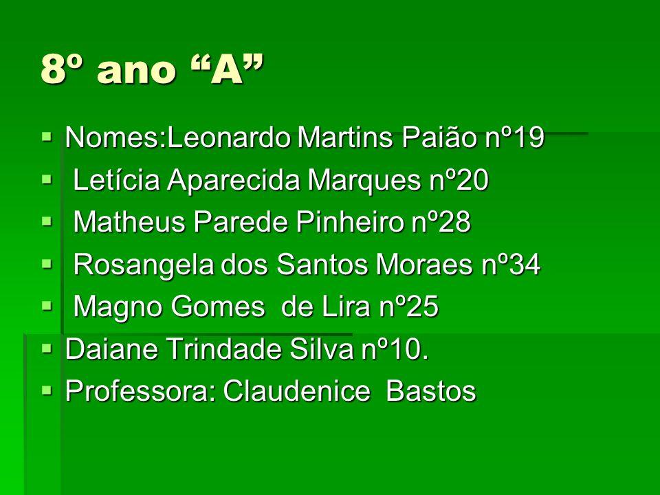 8º ano A Nomes:Leonardo Martins Paião nº19 Nomes:Leonardo Martins Paião nº19 Letícia Aparecida Marques nº20 Letícia Aparecida Marques nº20 Matheus Par