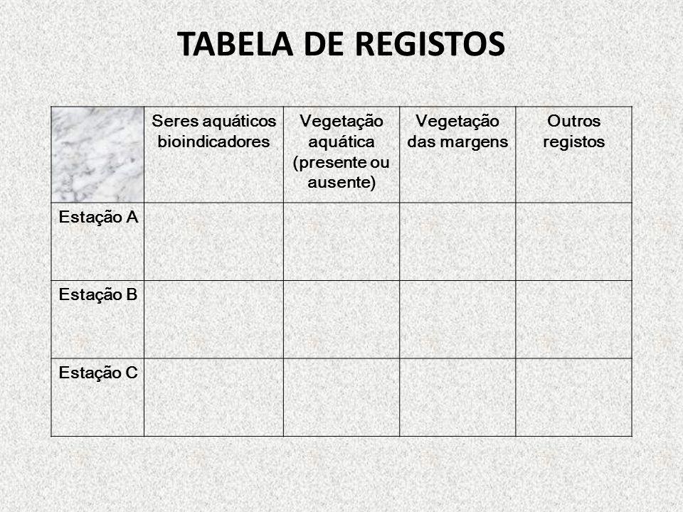TABELA DE REGISTOS Seres aquáticos bioindicadores Vegetação aquática (presente ou ausente) Vegetação das margens Outros registos Estação A Estação B E