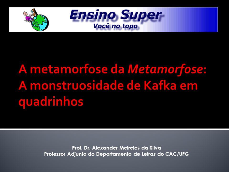 Prof. Dr. Alexander Meireles da Silva Professor Adjunto do Departamento de Letras do CAC/UFG