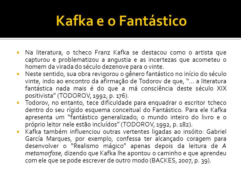 Na literatura, o tcheco Franz Kafka se destacou como o artista que capturou e problematizou a angustia e as incertezas que acometeu o homem da virada