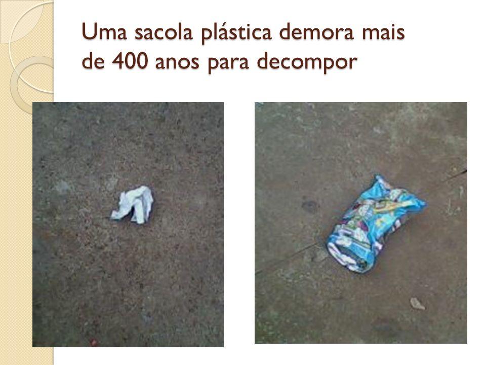 Uma sacola plástica demora mais de 400 anos para decompor