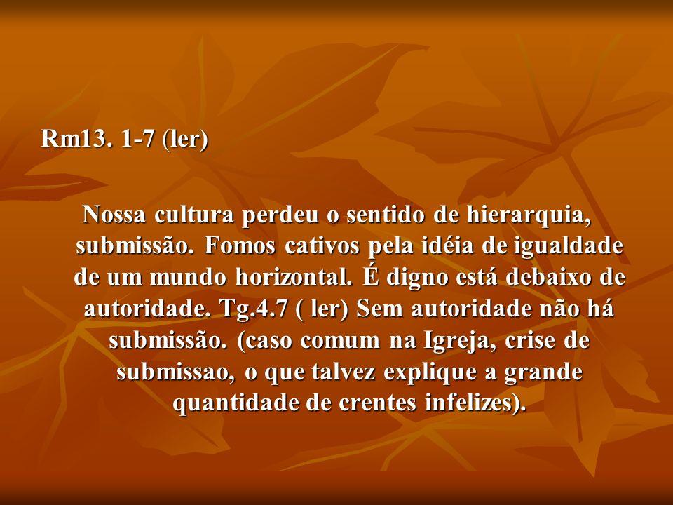 Rm13. 1-7 (ler) Nossa cultura perdeu o sentido de hierarquia, submissão. Fomos cativos pela idéia de igualdade de um mundo horizontal. É digno está de