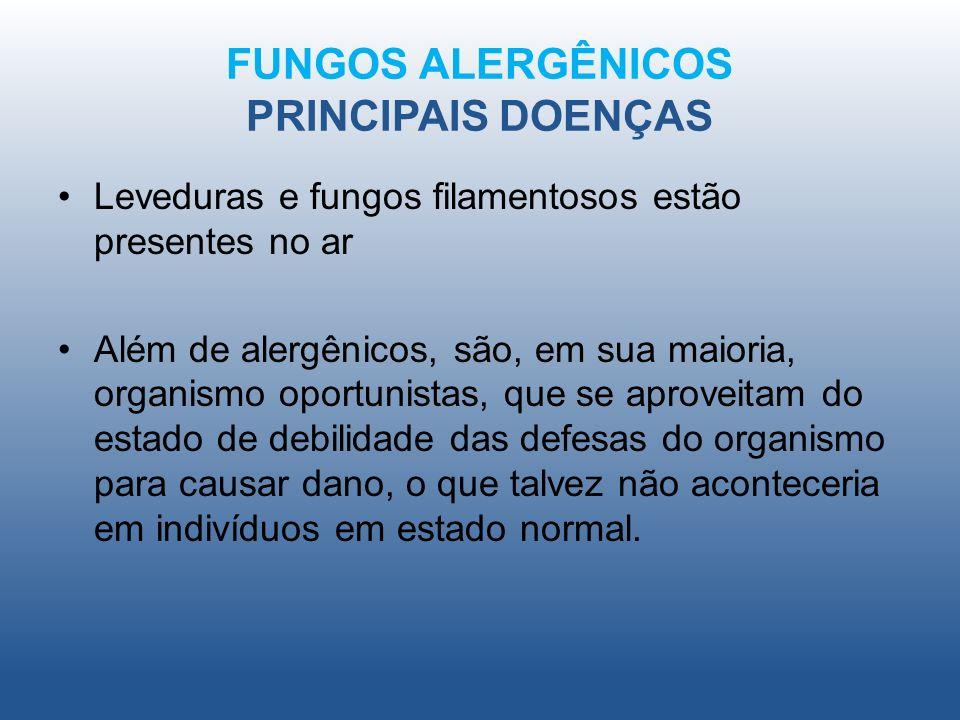 FUNGOS ALERGÊNICOS PRINCIPAIS DOENÇAS Leveduras e fungos filamentosos estão presentes no ar Além de alergênicos, são, em sua maioria, organismo oportu