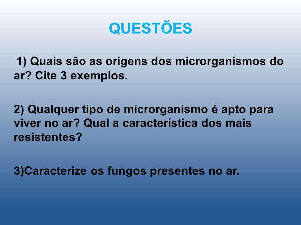 QUESTÕES 1) Quais são as origens dos microrganismos do ar? Cite 3 exemplos. 2) Qualquer tipo de microrganismo é apto para viver no ar? Qual a caracter