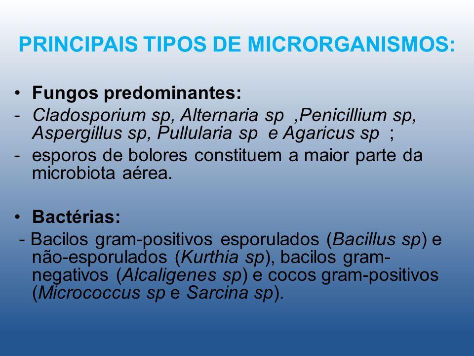 PRINCIPAIS TIPOS DE MICRORGANISMOS: Fungos predominantes: -Cladosporium sp, Alternaria sp,Penicillium sp, Aspergillus sp, Pullularia sp e Agaricus sp ; -esporos de bolores constituem a maior parte da microbiota aérea.
