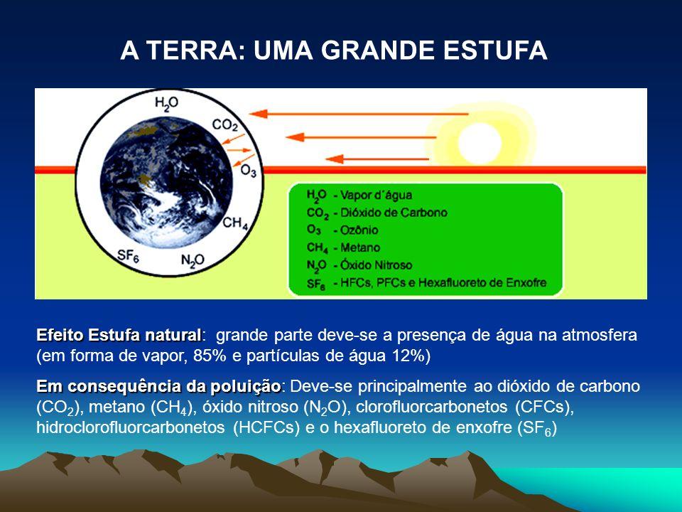 Efeito Estufa natural Efeito Estufa natural: grande parte deve-se a presença de água na atmosfera (em forma de vapor, 85% e partículas de água 12%) Em