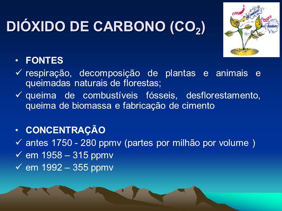 DIÓXIDO DE CARBONO (CO 2 ) FONTES respiração, decomposição de plantas e animais e queimadas naturais de florestas; queima de combustíveis fósseis, des