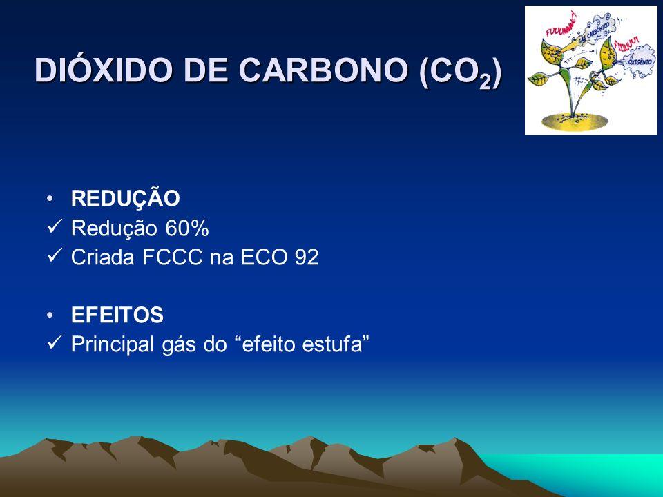OZONO (O 3 ) REDUÇÃO Controle dos veículos automotores (combustão) EFEITOS Irritação dos olhos e vias respiratórias Envelhecimento precoce e corrosão dos tecidos