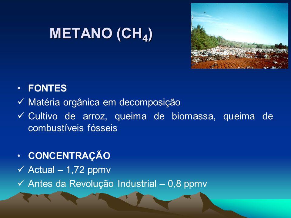 METANO (CH 4 ) FONTES Matéria orgânica em decomposição Cultivo de arroz, queima de biomassa, queima de combustíveis fósseis CONCENTRAÇÃO Actual – 1,72