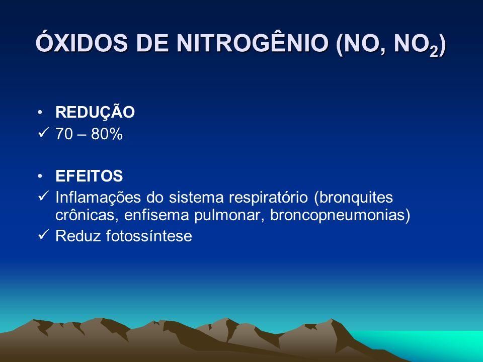 REDUÇÃO 70 – 80% EFEITOS Inflamações do sistema respiratório (bronquites crônicas, enfisema pulmonar, broncopneumonias) Reduz fotossíntese