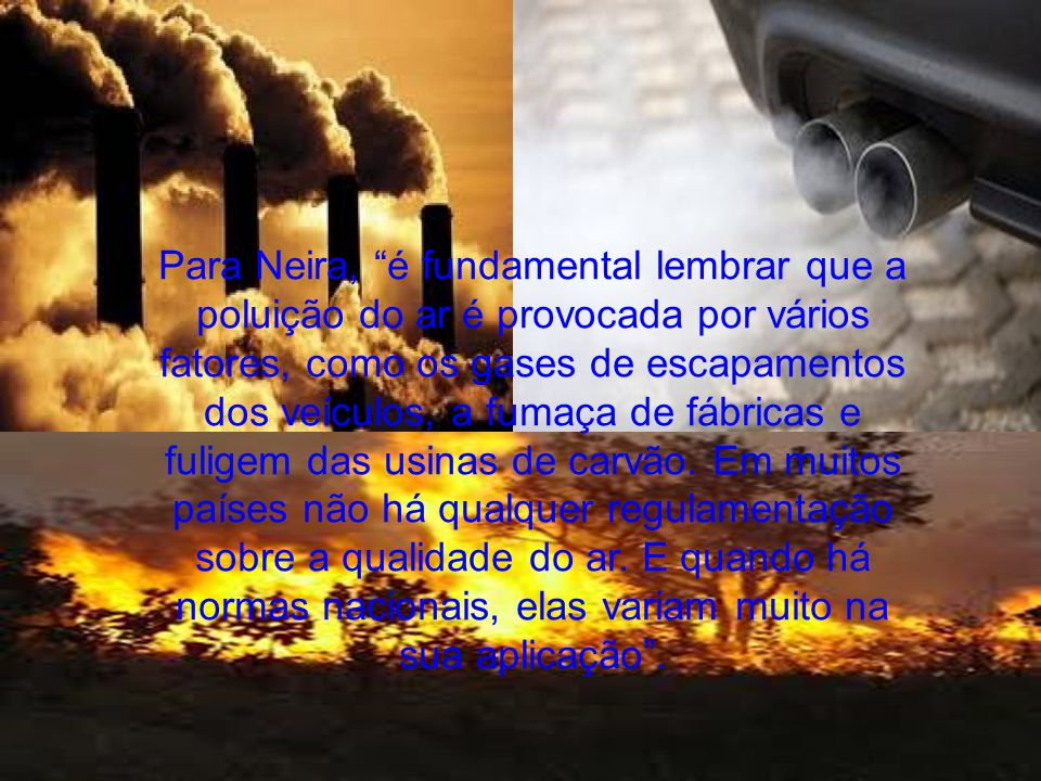 Para Neira, é fundamental lembrar que a poluição do ar é provocada por vários fatores, como os gases de escapamentos dos veículos, a fumaça de fábrica