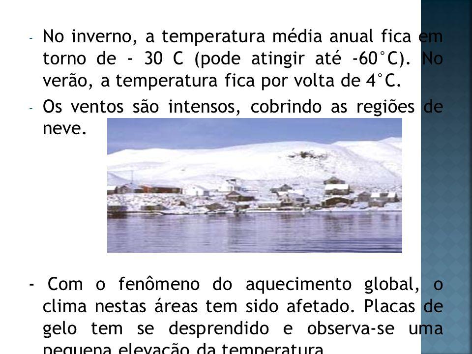 - No inverno, a temperatura média anual fica em torno de - 30 C (pode atingir até -60°C). No verão, a temperatura fica por volta de 4°C. - Os ventos s