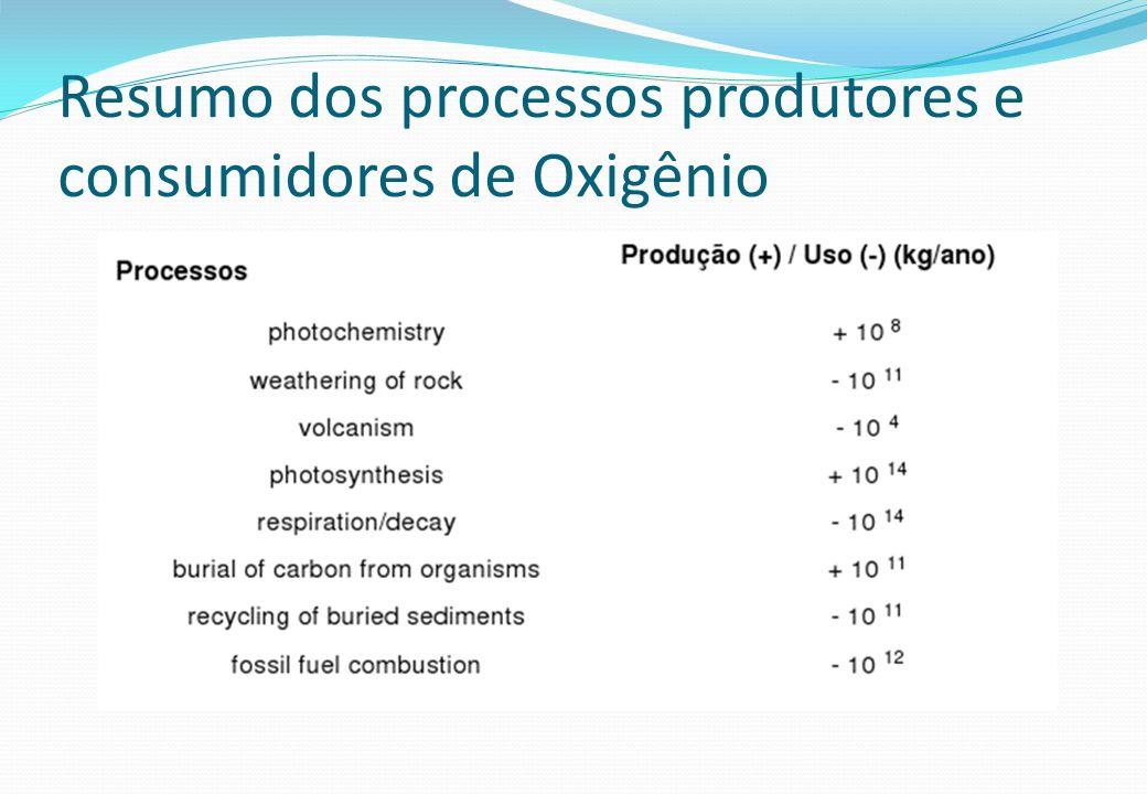 Resumo dos processos produtores e consumidores de Oxigênio