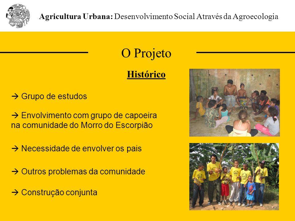 O Projeto Agricultura Urbana: Desenvolvimento Social Através da Agroecologia Histórico Envolvimento com grupo de capoeira na comunidade do Morro do Es