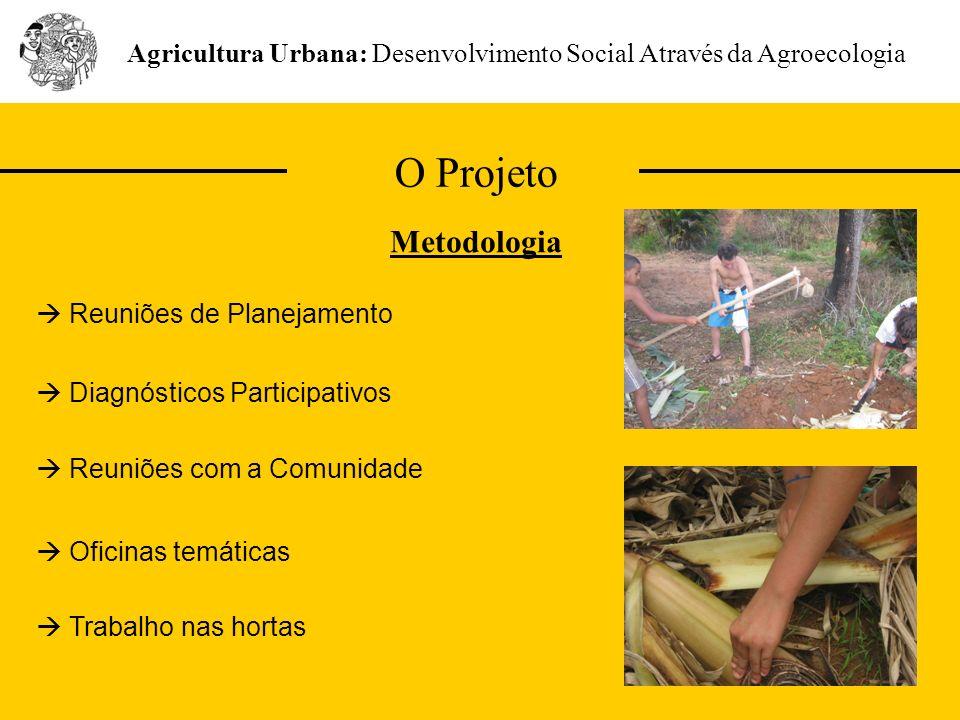 O Projeto Agricultura Urbana: Desenvolvimento Social Através da Agroecologia Metodologia Diagnósticos Participativos Reuniões de Planejamento Reuniões