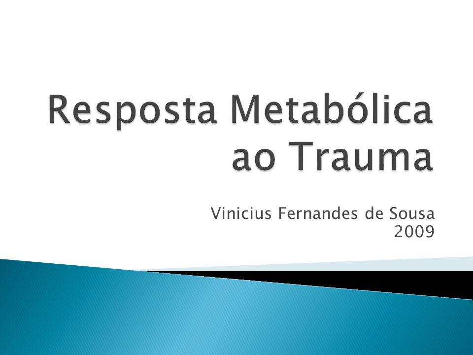 Vinicius Fernandes de Sousa 2009