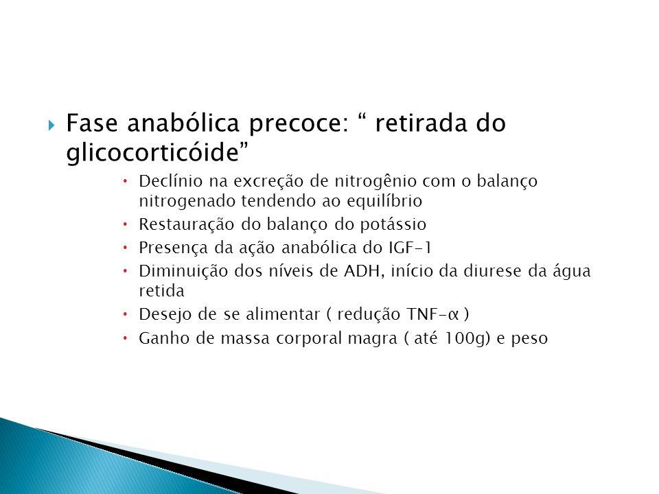Fase anabólica precoce: retirada do glicocorticóide Declínio na excreção de nitrogênio com o balanço nitrogenado tendendo ao equilíbrio Restauração do