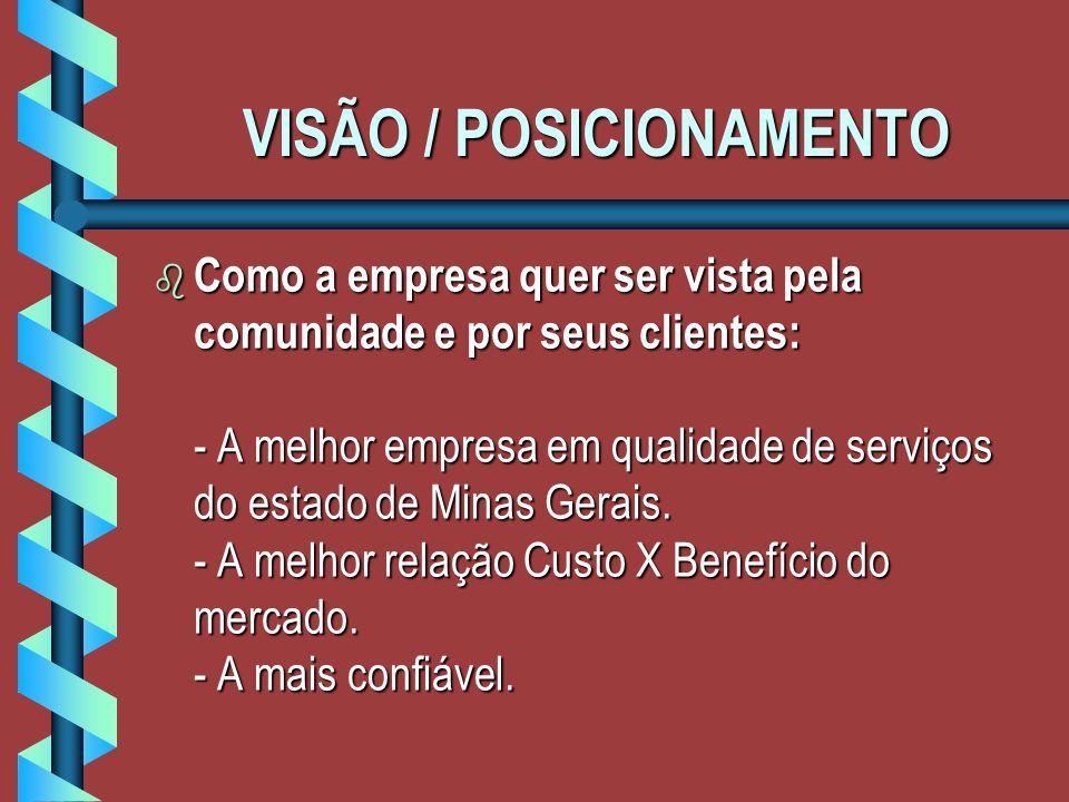 VISÃO / POSICIONAMENTO b Como a empresa quer ser vista pela comunidade e por seus clientes: - A melhor empresa em qualidade de serviços do estado de Minas Gerais.